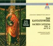 """Cantata No. 80 Ein feste Burg ist unser Gott, BWV 80: VIII Chorale - """"Das Wort sie sollen lassen stahn"""" [Choir] - Concentus Musicus Wien, Nikolaus Harnoncourt & Tölz Boys' Choir"""