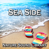 Sea Side (Nature Sounds for Deep Sleep, Relaxation, Meditation, Spa, Sound Therapy, Studying, Healing Massage, Yoga and Chakra Balancing) - Single