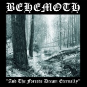And the Forest Dream Eternally cover art
