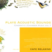Plays Acoustic Sounds: Cinematic I, Chamber Music, Vol. 7