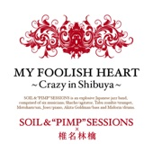 MY FOOLISH HEART~Crazy in Shibuya~