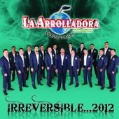 Irreversible ... 2012