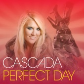 Perfect Day cover art