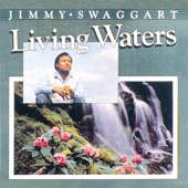 Let Your Living Water Flow (Come Now Holy Spirit)