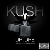 Kush (feat. Snoop Dogg & Akon) - Single cover art