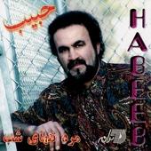 Mardeh Tanhayeh Shab - Habib
