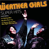The Weather Girls - It's Raining Men bild