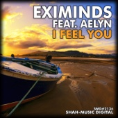I Feel You (feat. Aelyn) [Chillout Version]