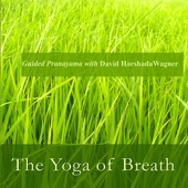 The Yoga of Breath: Guided Pranayama With David Harshada Wagner