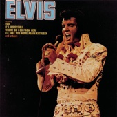 Elvis: Fool cover art