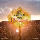 Het Openen Van 17 Chakra's