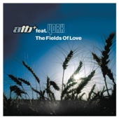 The Fields of Love (feat. York) - EP cover art