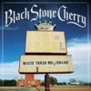 White Trash Millionaire - Single, Black Stone Cherry