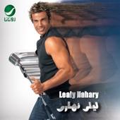 Rihet El Habayib - Amr Diab
