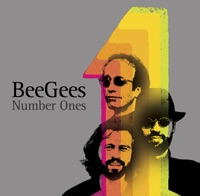 Bee Gees - More Than a Woman