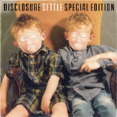 Disclosure - You & Me (feat. Eliza Doolittle) [Flume Remix] artwork