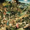 Fleet Foxes, Fleet Foxes