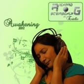 Awakening 2012 - Single