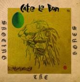 Cate Le Bon - Shoeing the Bones artwork