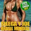 Brasil Mundial (Brasil 2014 Copa Mundial Remix) - Single