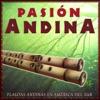 Pasión Andina Flautas Andinas en América del Sur, DJ Donovan