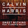 Sweet Nothing (feat. Florence Welch) [Diplo + Grandtheft Remix] - Single, Calvin Harris
