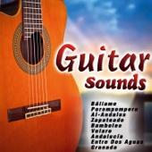 Guitar Sounds