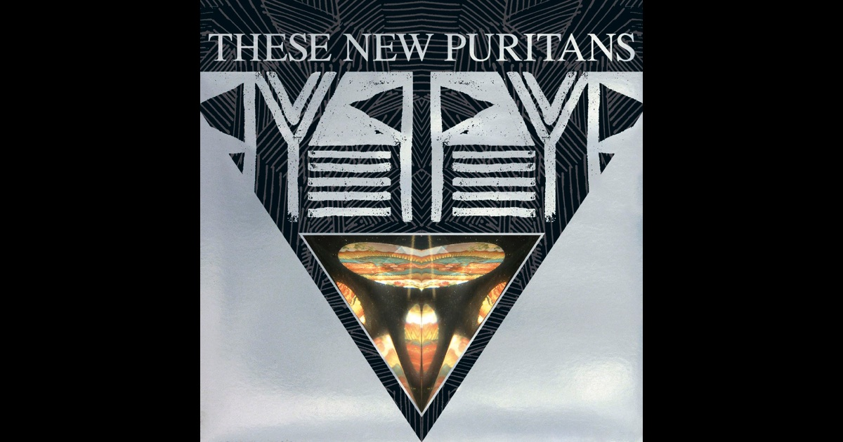 These New Puritans Swords Of Truth