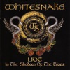 Imagem em Miniatura do Álbum: Live: In the Shadow of the Blues