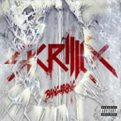 Download BangarangofSkrillex