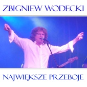 Zbigniew Wodecki - Chalupy Welcome To artwork