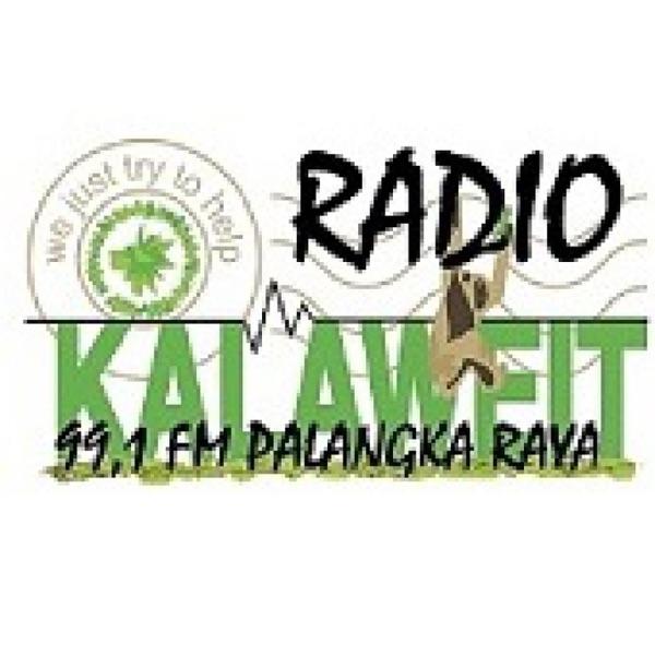 Kalaweit Radio - Live from Borneo