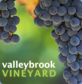Valleybrook Vineyard Audio Sermons