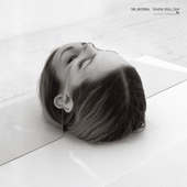The National - Trouble Will Find Me artwork