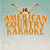 Today's Top Country Karaoke Hits, Vol. 16