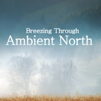 Ambient North - Soap Suds