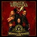 Black Eyed Peas I Got A Feeling (David Guetta Remix) Est�dio de Fran�a