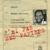 J'ai Pas Mes Papiers - Single