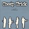 Silver (Live), Cheap Trick