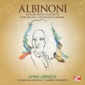 Concerto for Organ & Strings in G Minor: Adagio