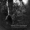 Asleep In the Downlights - EP ジャケット写真