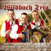 Bandltanz - Wildbach Trio