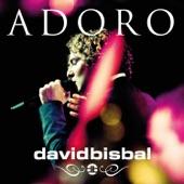 Adoro (Versión Acústica) [Una Noche en El Teatro Real 2011] - Single
