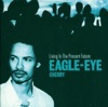Living In the Present Future, Eagle-Eye Cherry