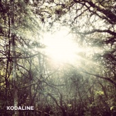 Kodaline - All I Want artwork