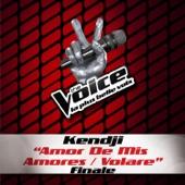 Amor de mis amores / Volare (The Voice 3) - Single