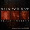 Need You Now (A Cappella) [feat. Evynne Hollens & Jake Moulton] - Single, Peter Hollens