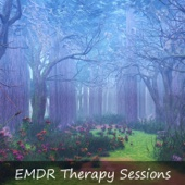 EMDR Therapy Sessions