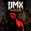 The Best of DMX (Re-Recorded Versions), DMX