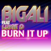 Burn It Up (Edit Radio) [feat. Lukie D] - Single